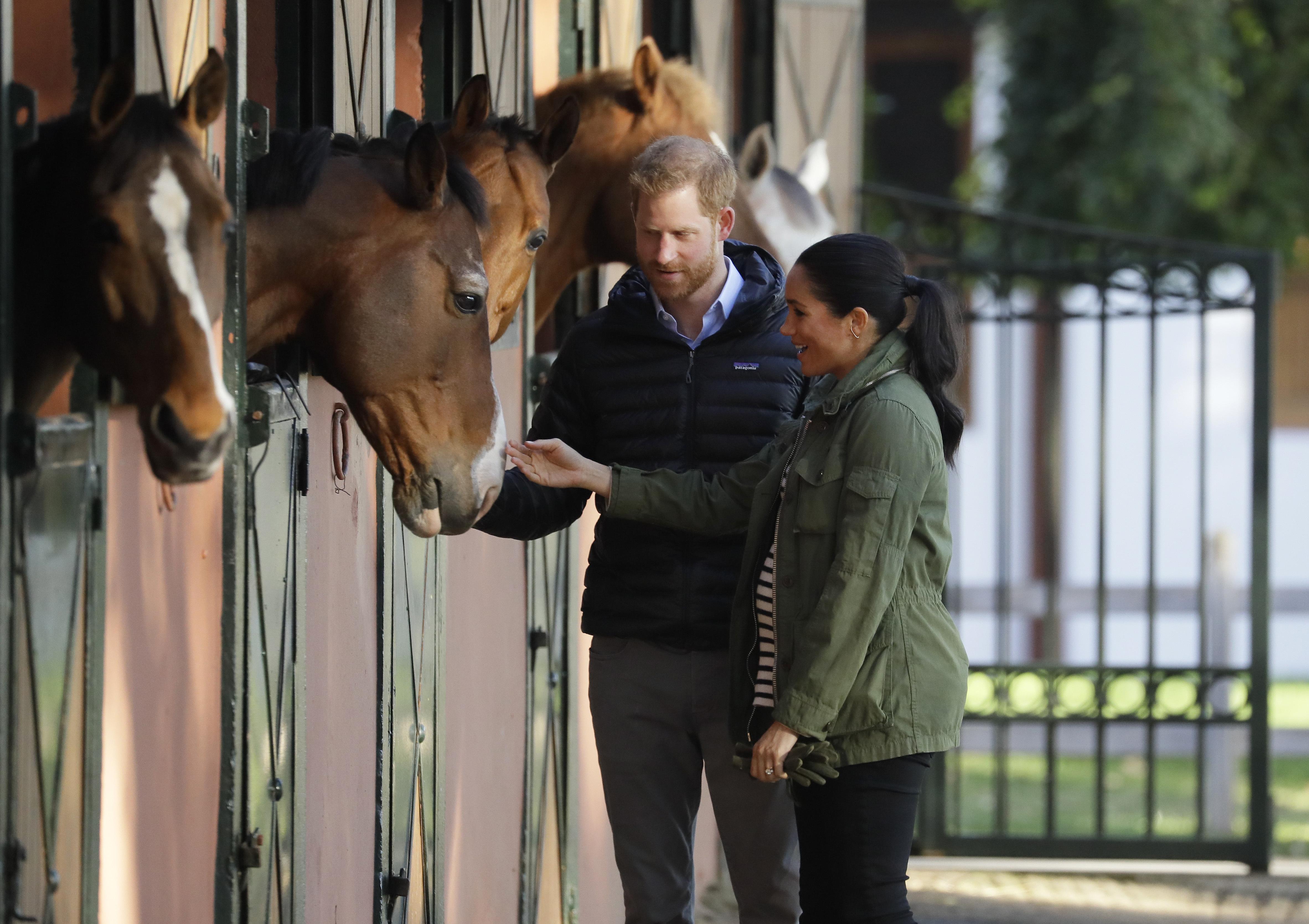 El Príncipe Harry y Meghan Markle acarician un caballo durante su visita a la Real Federación de Deportes Ecuestres de Marruecos. (AP)