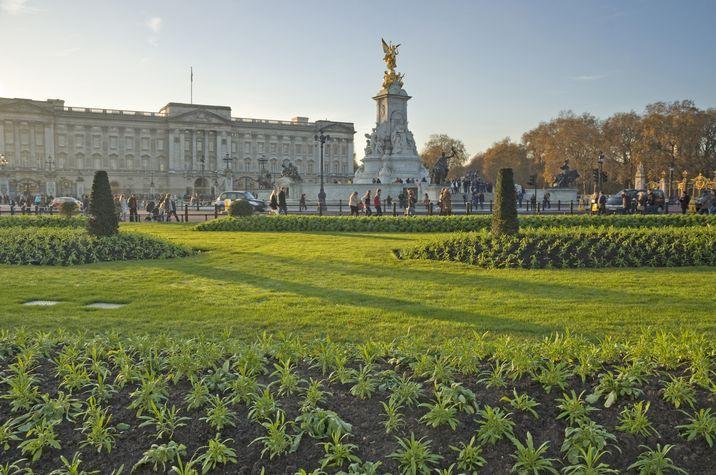 Imagen de la explanada de Buckingham Palace y sus jardines anexos.