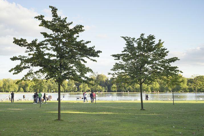 Una vista del paseo de  Kensington Gardens, en el centro de Londres.