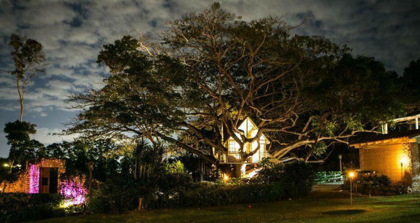 Hacienda Don Carmelo, en Vega Baja. Contacto: (787) 991-7044 figueroam5@1cloud.com (Suministrada)