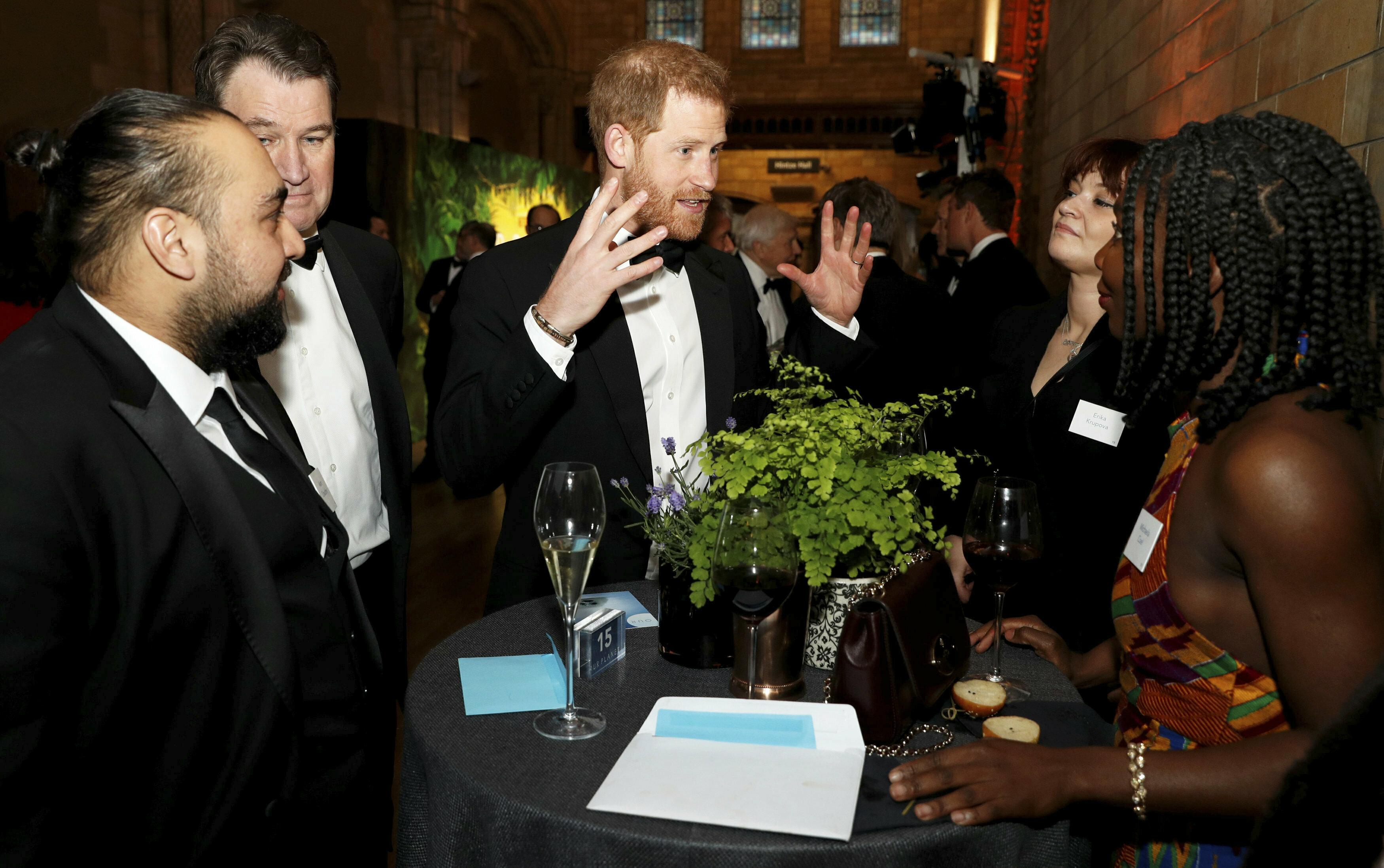 El príncipe Harry siempre ha sido un gran defensor de la protección del planeta. (AP)
