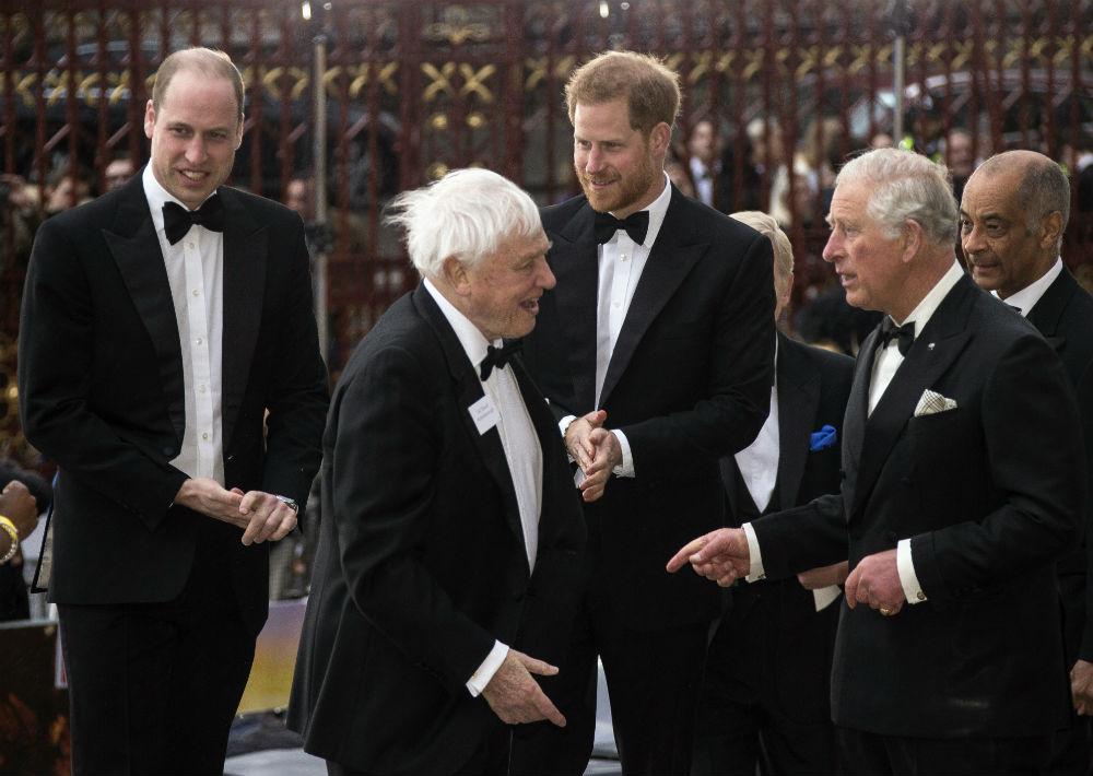 Los príncipes fueron recibidos por el naturalista británico, David Attenborough, quien prestó su voz para narrar la historia. (AP)