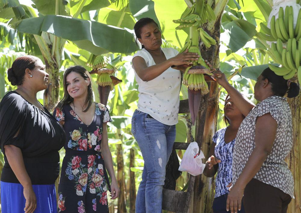 En su segundo día de estancia en República Dominicana, la reina visitó una cooperativa de cultivo y comercialización de guineo orgánico que emplea a mujeres con pocos recursos gracias a los préstamos y ayudas de la cooperación española. (EFE)
