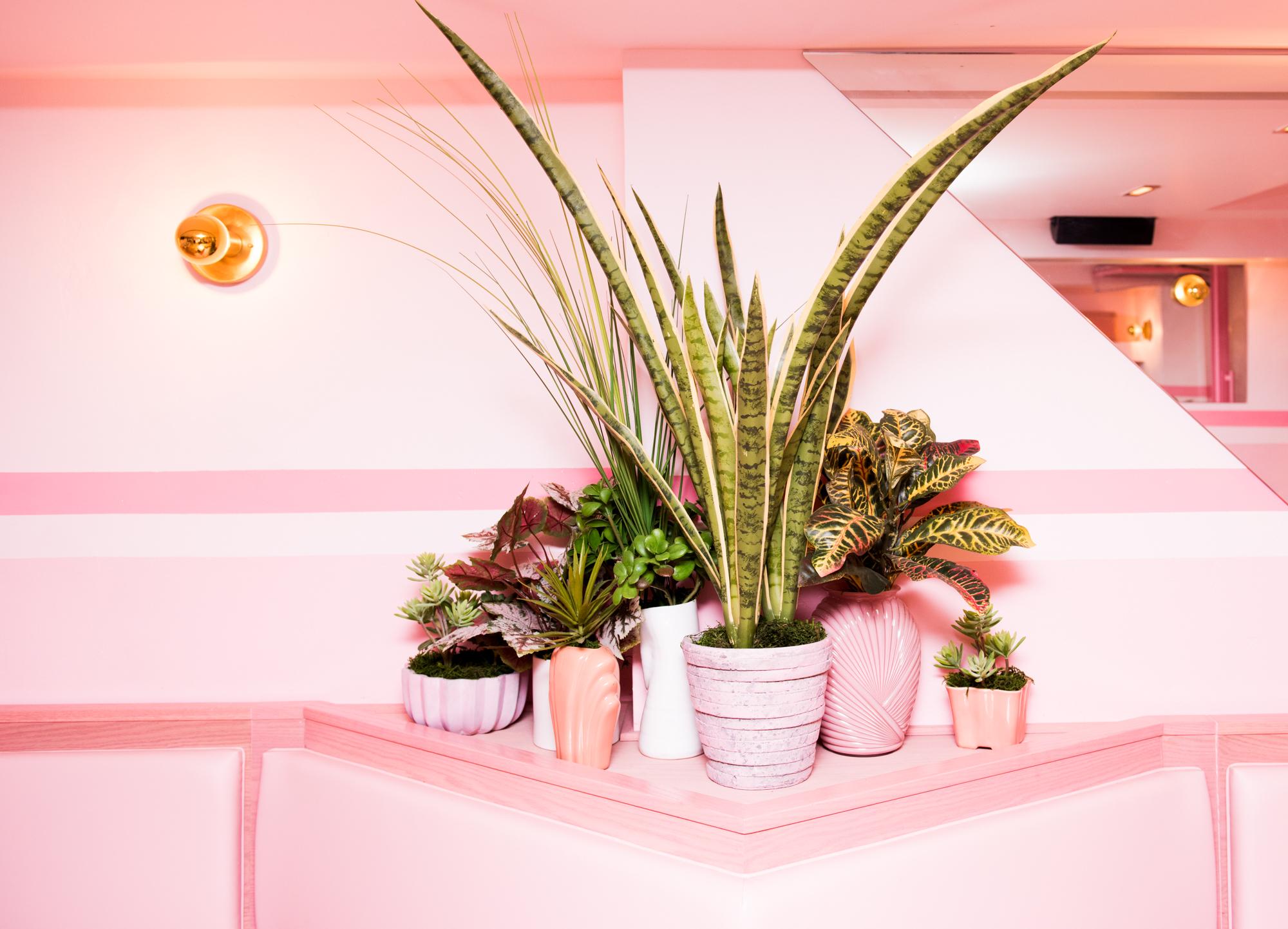 Puedes crear un rincón con el color preferido por las Millenialls para las plantas de tu casa. Foto WGSN.