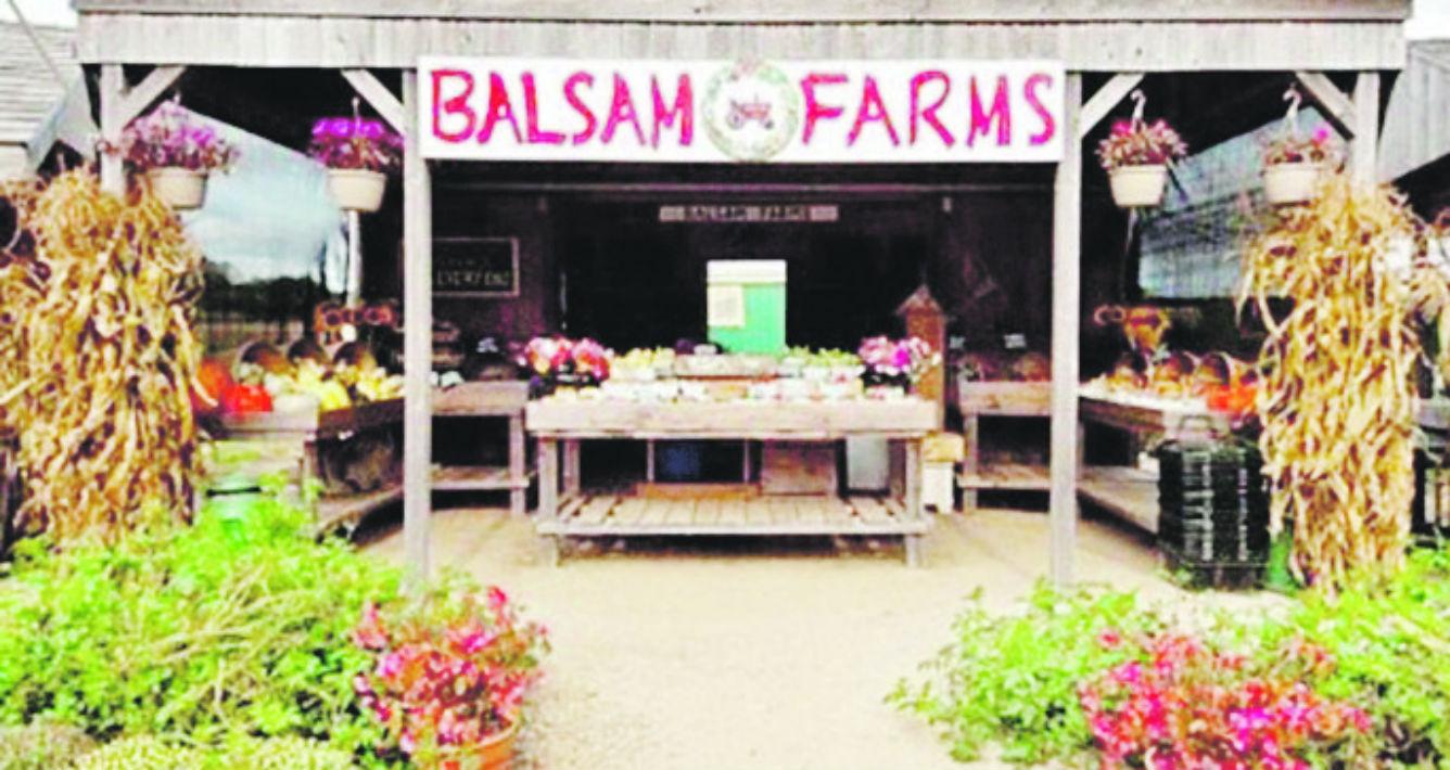 """Me apasionan los """"Farm Markets"""" y """"Farm Stands"""" de Los Hamptons, con frutas, vegetales y flores frescas traídas diariamente por los agricultores del área. Balsam Farms, en Amagansett, es uno de mis preferidos. (Suministrada)"""