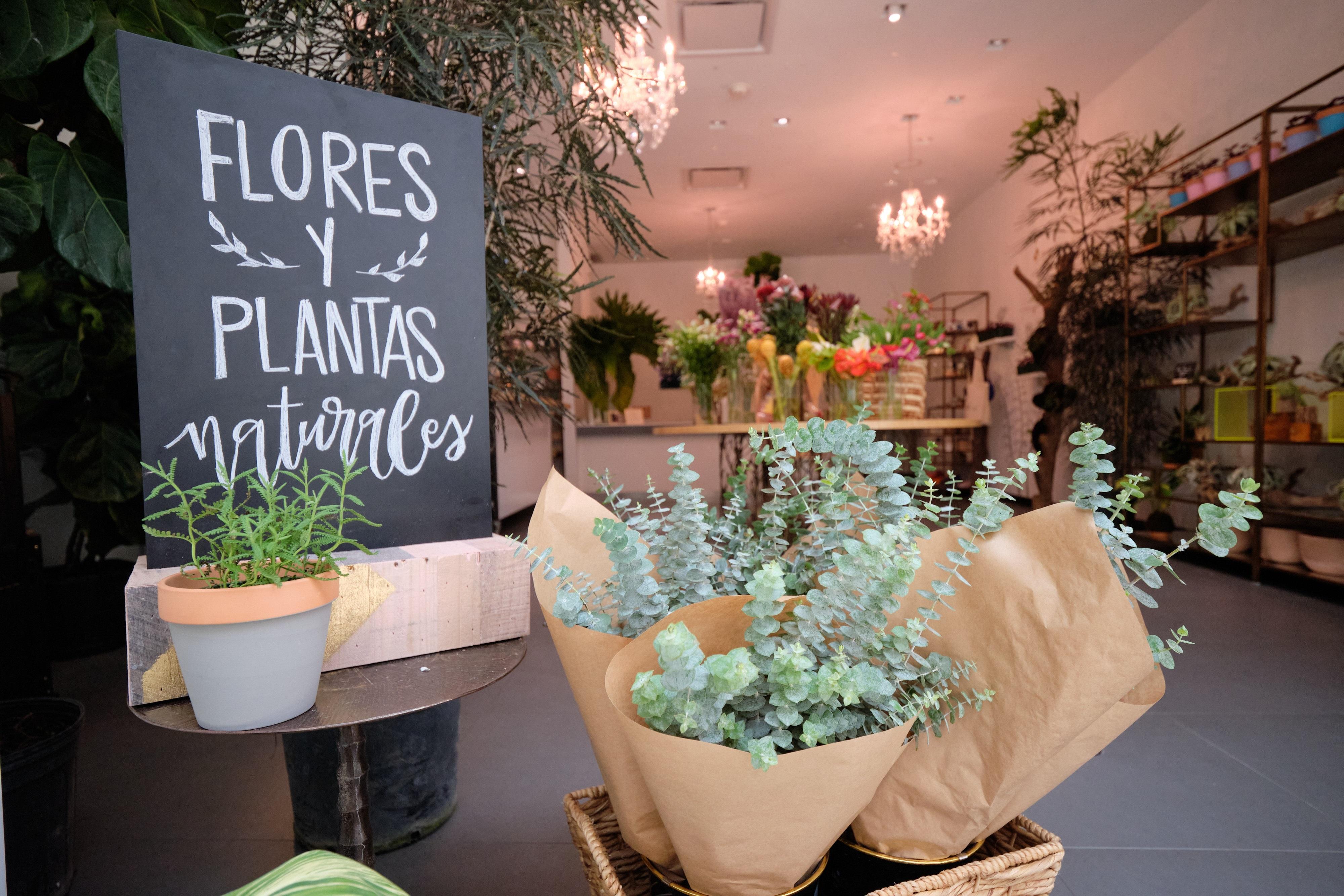 Ve a la segura – Si tienes dudas en qué regalas, un arreglo de flores es esa opción infalible. especial. Consigue desde plantas naturales hasta un arreglo floral en The Flowers Culture, en The Mall of San Juan. (Suministrada)