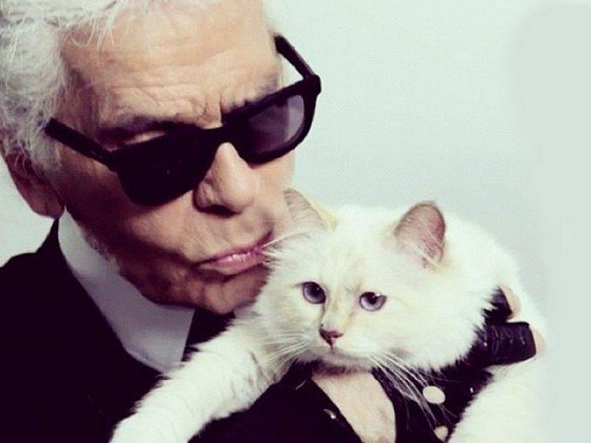Choupette, la gata que podría heredar la fortuna de Karl Lagerfeld