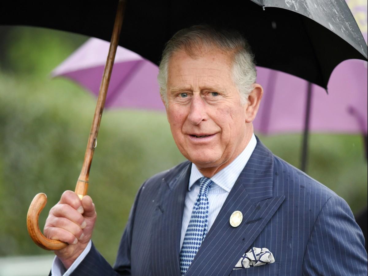 El príncipe Charles hace su primera aparición pública desde que se recuperó del COVID-19