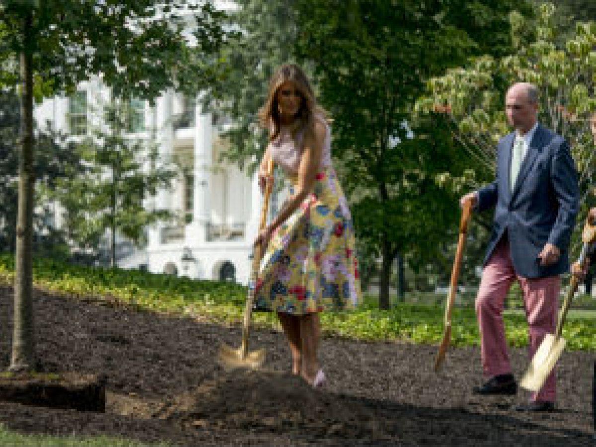 Melania Trump siembra un árbol luciendo un costoso ajuar