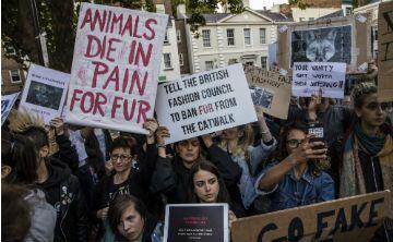 La Semana de la Moda de Londres elimina el uso pieles de animales
