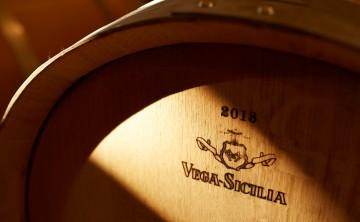 Vega Sicilia: tempo de evolución