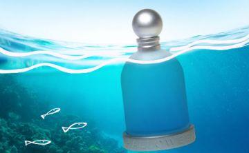 7 nuevos perfumes de verano